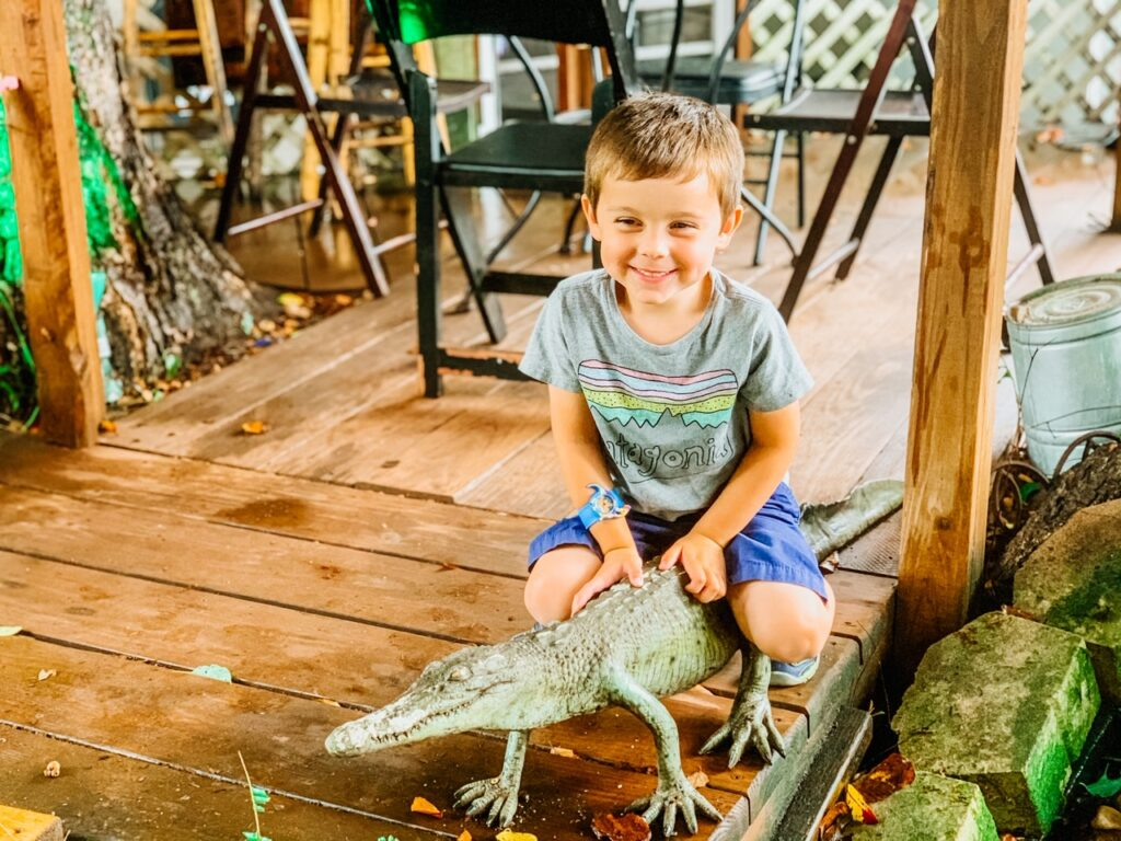 boy on alligator at lowcountry backyard